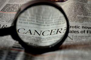 Krebs im Fokus