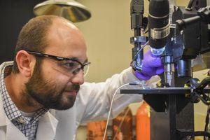 Neuer Blutzuckersensor macht Piksen obsolet