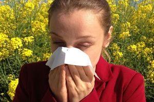 Pollenallergikerin